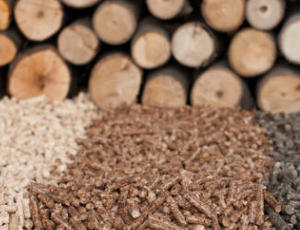 Biomass renewable power